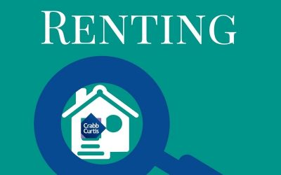 How much do you know about renting?