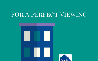 5 tips for a perfect viewing